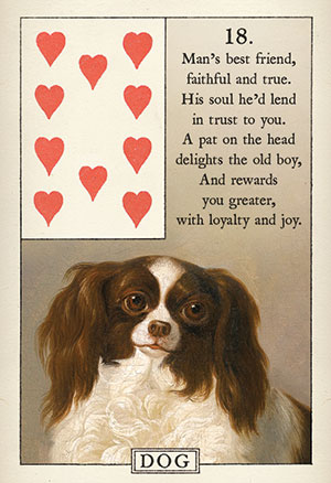 Blue Bird Lenormand Dog Card
