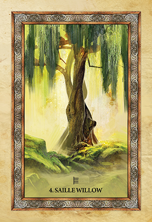 Celtic Tree Oracle Willow Card