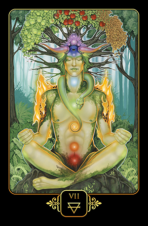 Dreams of Gaia Tarot 7 of Earth Card