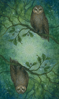 Forest of Enchantment Tarot Back of Cards