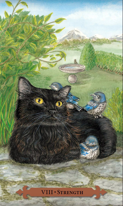 Mystical Cats Tarot Strength Card
