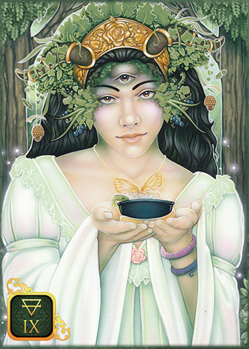 Dreams of Gaia Pocket Tarot 9 of Earth
