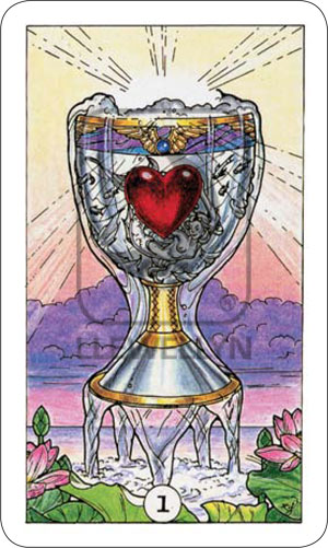 Robin Wood Tarot Ace of Cups