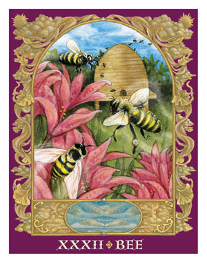 Sacred World Oracle Bee Card