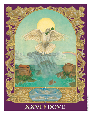 Sacred World Oracle Dove Card