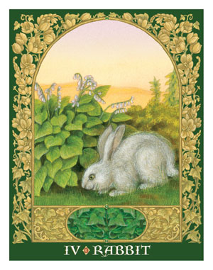 Sacred World Oracle Rabbit Card