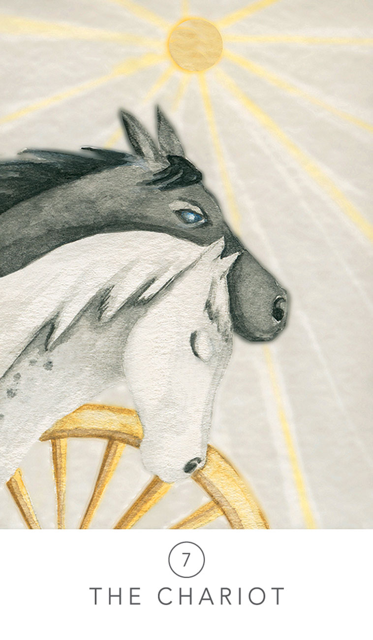 White Sage Tarot Chariot Card